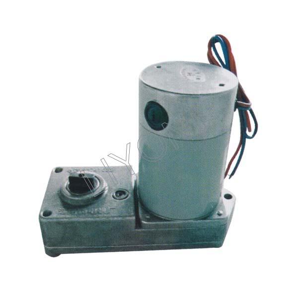 Yueqing Liyond Electric Co Ltd Motor 66zy Cj02