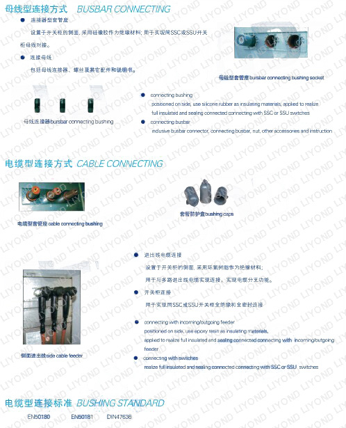 parameters-LKC2K-common-gas-tank-switchgear-SF6-for-insulating-and-sealing-RMU-series-ormazabal-series-0