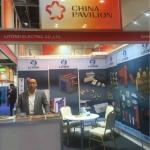 2017 Dubai Electricity Exhibition